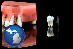 michigan map icon and a titanium dental implant and wisdom tooth