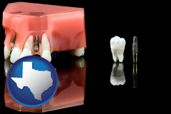 texas map icon and a titanium dental implant and wisdom tooth