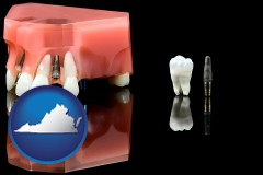 virginia map icon and a titanium dental implant and wisdom tooth